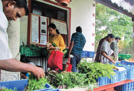 Organic food outlet Restore, which has become a household name in Chennai, has an annual turnover of  Rs 1 crore
