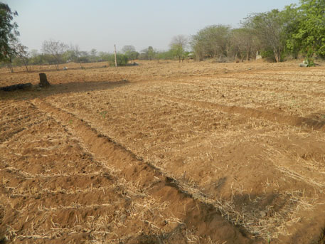 Pollution from the factories of Karur which at one time numbered 500, have rendered farms barren (photos by M Suchitra)