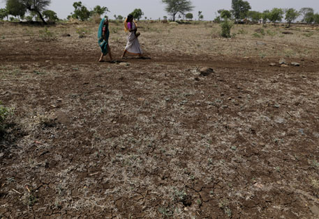 Apart from winter storms, Marathwada has received no rains in the past 16 months. Government irrigation schemes have also failed the farmers