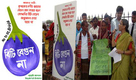 Activists have questioned government authorities for showing haste in propagating Bt brinjal (Photo courtesy Ubinig)