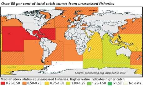 Over 80 per cent of total catch comes from unassessed fisheries