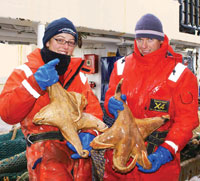 Census researchers with giant Macroptychaster starfish