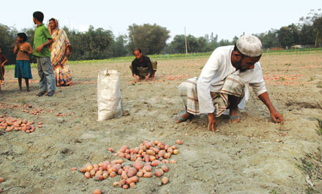 Farmer Sahinoor Alam says his family would enter the forest to survive on roots and tubers during lean seasons before the introduction of the new crop mix