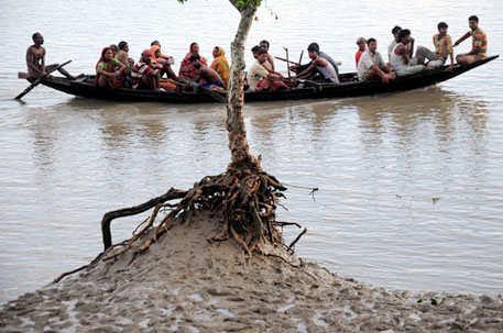 A group returns from the forests after hunting crab