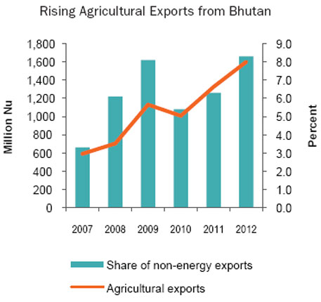 Data from Annual Report 2012/13 of the Royal Monetary Authority of Bhutan