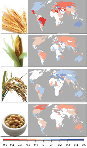 Climate change hits food production