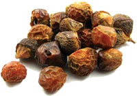 Soapnut, a mosquito repellent
