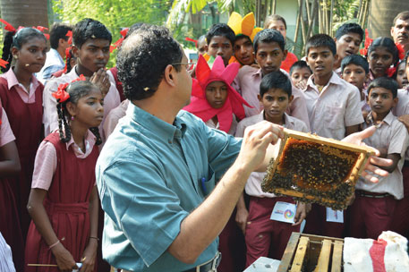 Non-profit Under The Mango Tree's events such as bee-walks have proved to be a big draw, especially for children and young adults