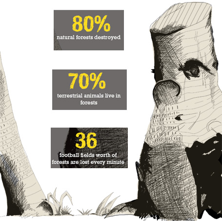 Stark facts: Forest destruction