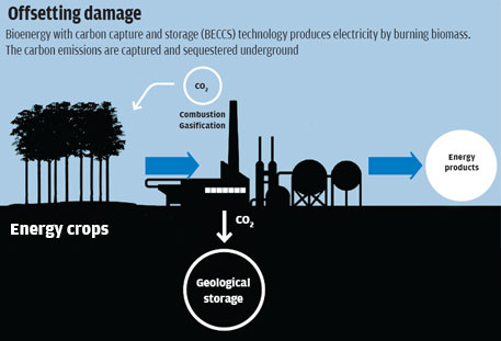 Can carbon-negative be the next step?