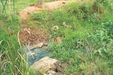 These canals were maintained by the community whose members were rewarded through a land tenure system