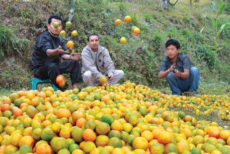 Sikkimese organic products have to compete with cheap conventional farm produce