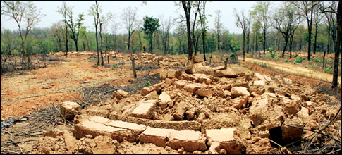 Forest rights and wrongs in Sonbhadra
