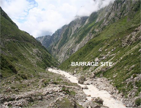 Green tribunal halts tree felling for Alaknanda-Badrinath hydropower project