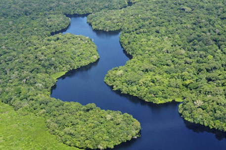 Aerial view of the Amazon rainforest in Brazil (Photo courtesy: Neil Palmer/CIAT/Flickr)