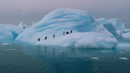 Antarctic sea ice expansion overestimated, says study