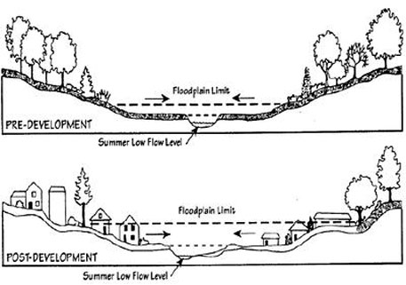 Cross section of floodplain elevation shows how city development across India pay scant regard to rivers' needs