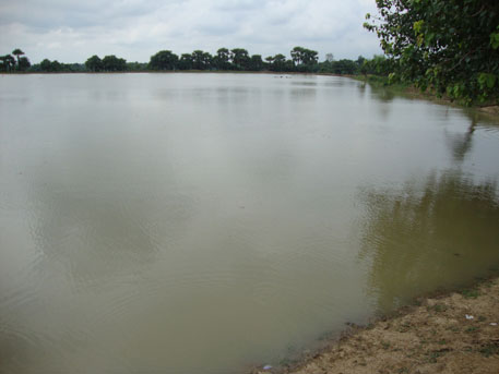 Restore malgujari tanks to irrigate eastern Vidarbha: study