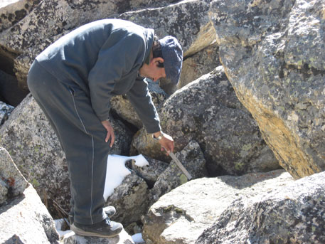 Chaujar studied lichens growing on the rocks of Chorabari's moraines to determine the glacier's history