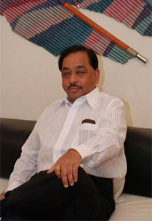 Will Narayan Rane's loss in Maharashtra mean better protection for Western Ghats?