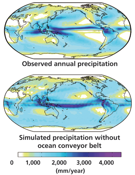 Annual precipitation with and without ocean conveyor belt