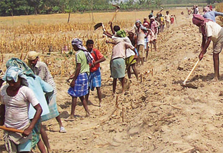 Mukhiyas in Bihar have a key role in implementing welfare schemes like MGNREGA and PDS  (DTE file photo)