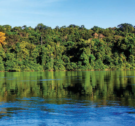 The Brazilian Amazon (Image source: Social Progress Index for the Brazilian Amazon)