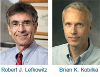Chemistry Nobel for discovery of receptors that help cells respond