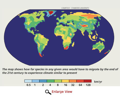 How far species would have to migrate by the end of the 21st century