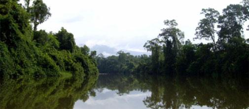 Why we celebrate rivers