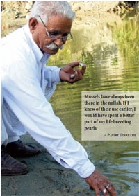 Mussels have always been there in the nullah. If I knew of their use earlier, I would have spent a better part of my life breeding pearls – PANDIT DINANATH