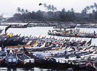 Trawlers keep off Kerala coast