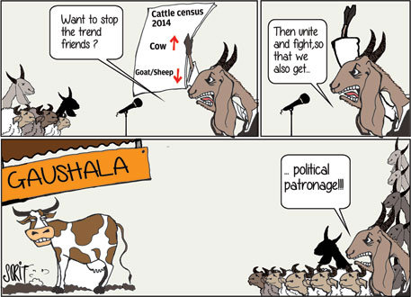 Graphic Editor Sorit Gupto's take on latest Indian livestock census