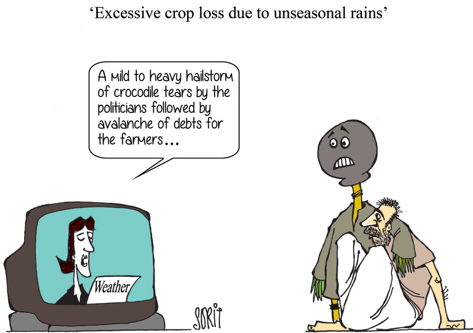 Graphic Editor Sorit Gupto's take on crop loss caused by unseasonal rains