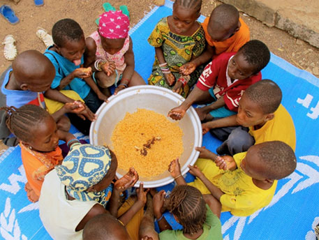 Five million people in Africa die of hunger every year