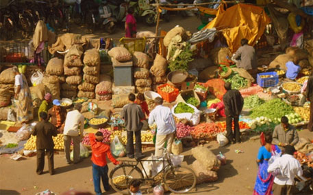 Maharashtra government dismisses 166 'corrupt' agricultural market committees