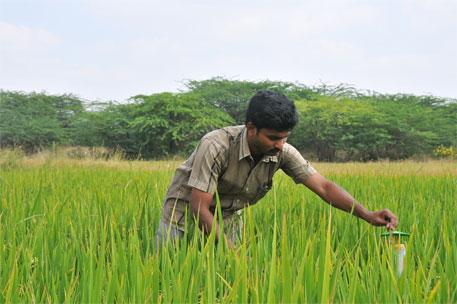 Centre's agriculture scheme completed only 62% projects in 6 years