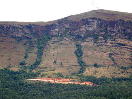 Grasslands in Western Ghats diverted for resort construction