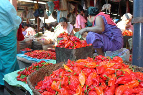 In Assam, vendors in local markets charge up to Rs 10 for five chillies; In Imphal, a single fresh chilli can cost up to Rs 5