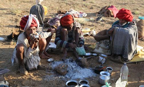 The Raika are Rajasthan's traditional camel keepers (Photo: Jemima Rohekar)