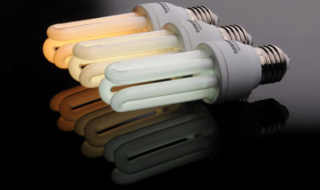Industry sets the rules to dispose of CFLs safely