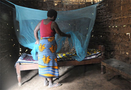 Alliance to curb malaria impact on migrant populations