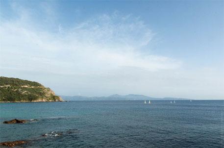Mediterranean Sea accumulating plastic debris