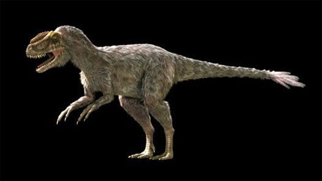 Scientists discover fossils of largest feathered dinosaur