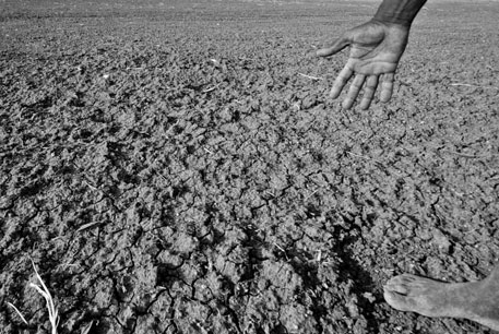 2012 a drought year, accepts government