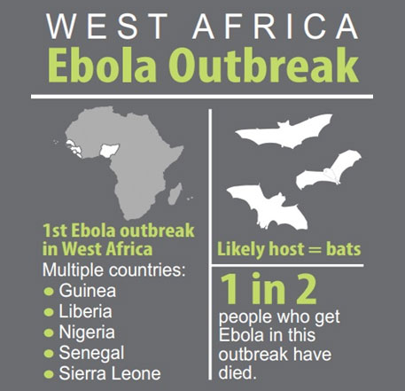 Courtesy: US' Centers for Disease Control and Prevention