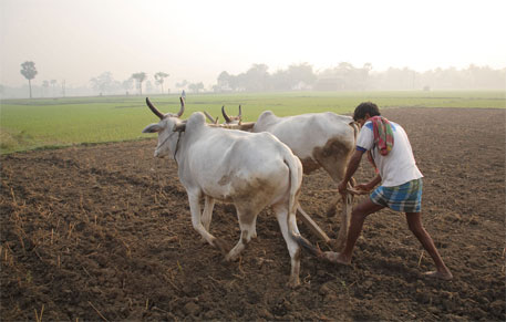 Kharif sowing season is close at hand, but around 100,000 farmers of Nagpur, Wardha and Buldhana districts in Maharashtra are unlikely to get agricultural loan