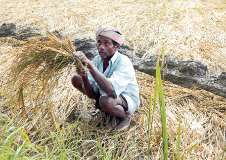 Loan waiver will not benefit marginal farmers, say activists (photo by M Suchitra)