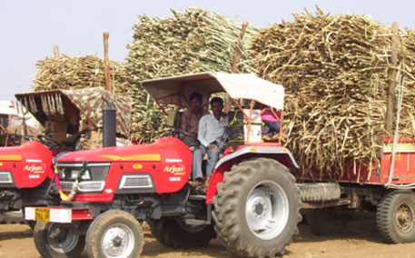 Maharashtra's new Sugarcane Price Control Board to meet this week