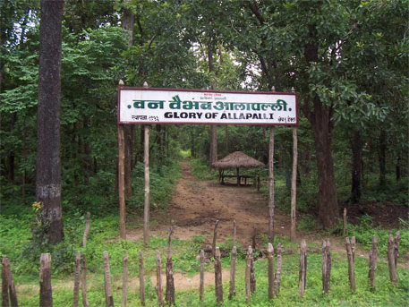 natural vegetation of maharashtra